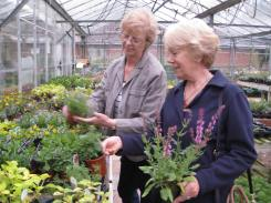 Jacky and Di choosing plants